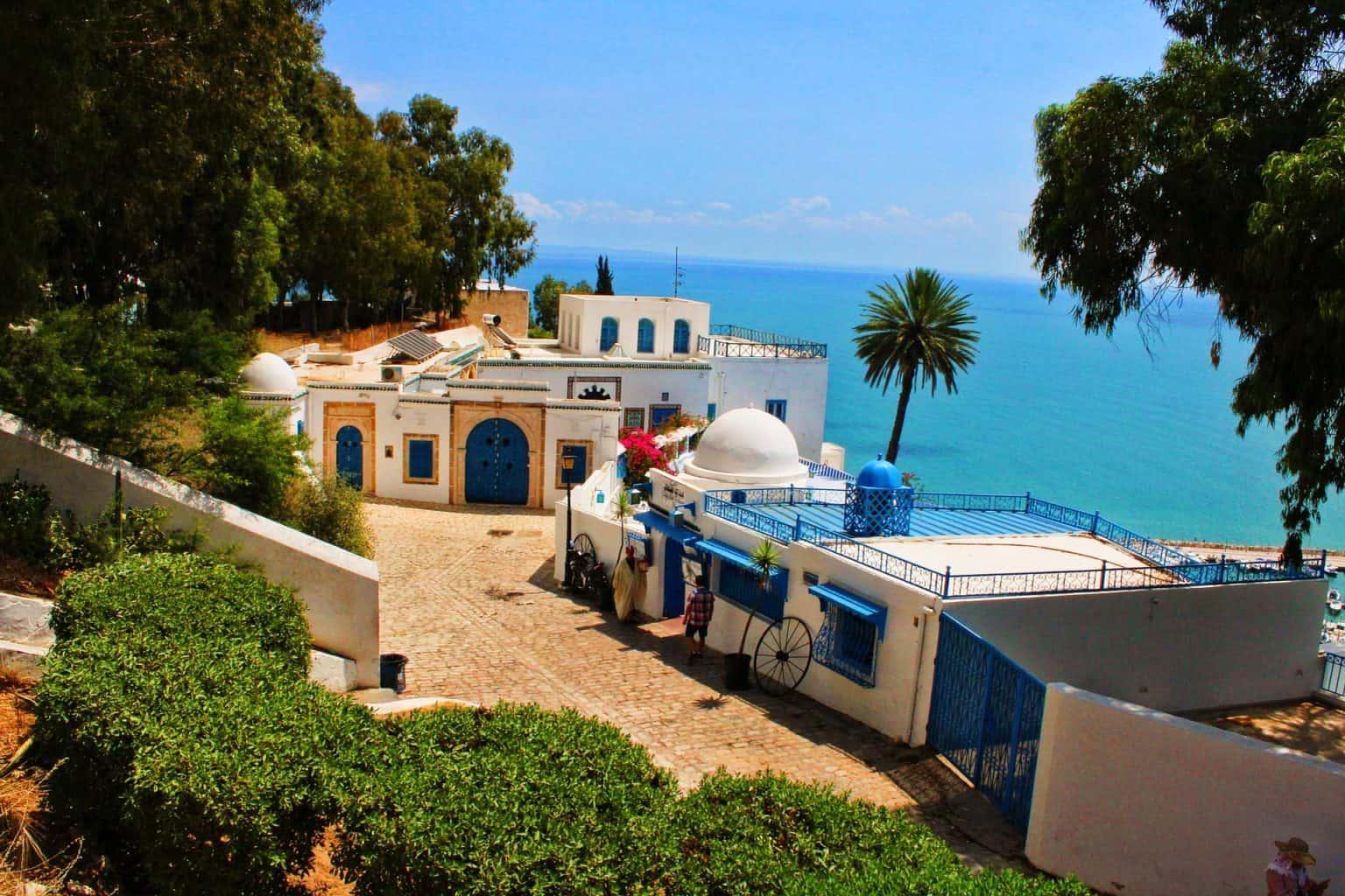 Artistic Sidi Bou Said Walking tour