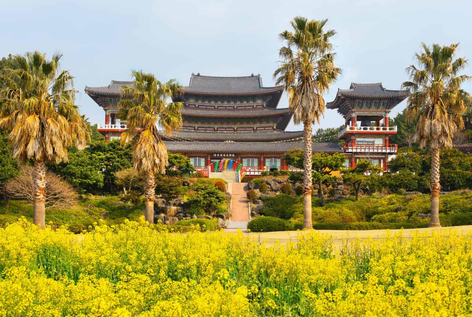 Jeju walking tour