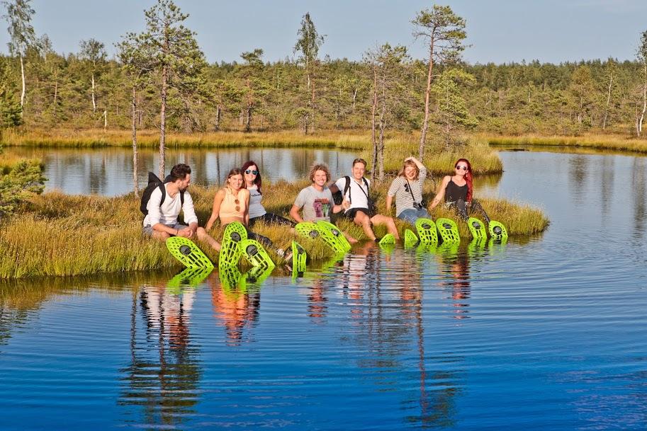 Swamp waders1