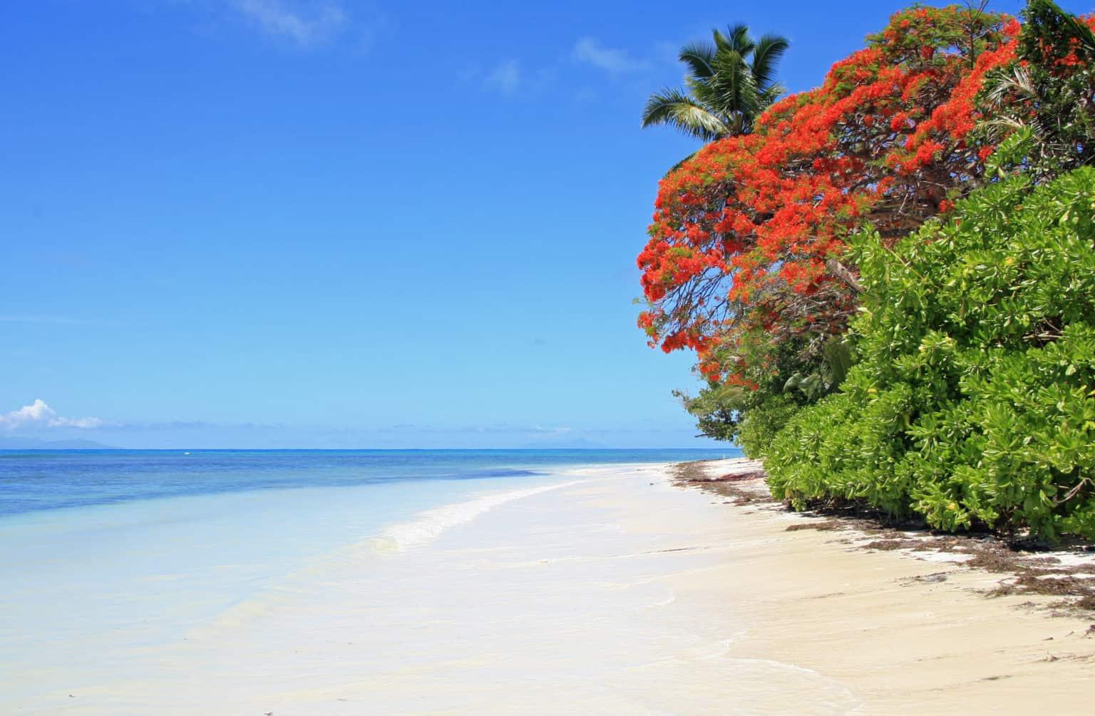 Walking Tour in Anse Royale
