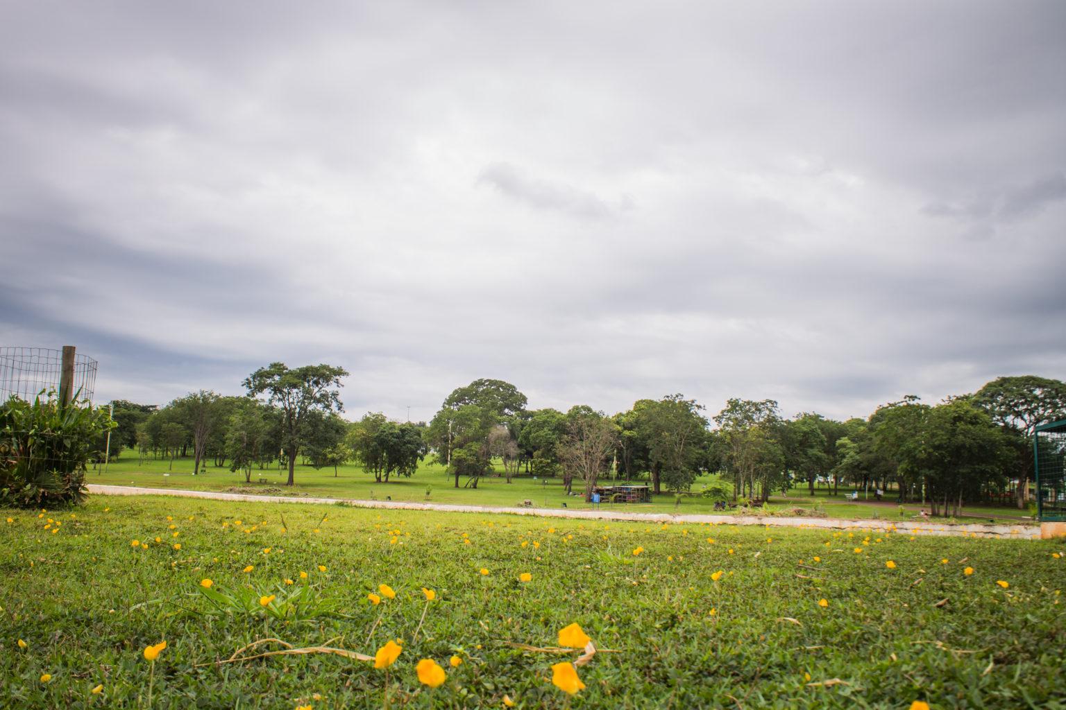 Walking tour in Campo Grande