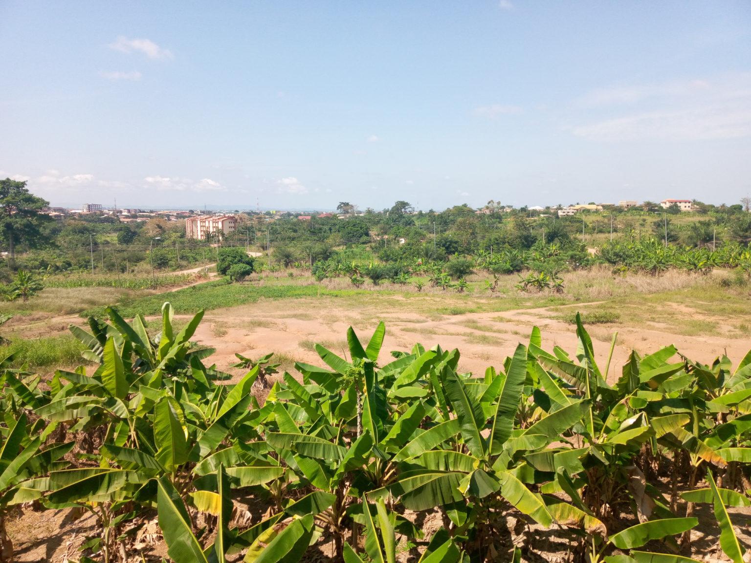 walking-tour-in-kumasi