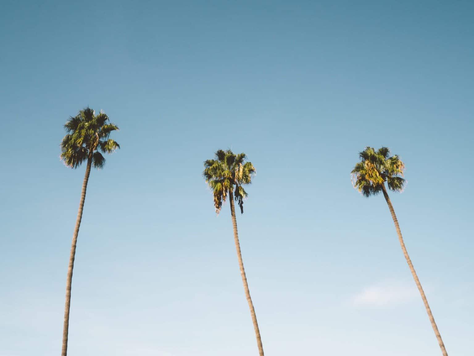 Walking tour in San Diego